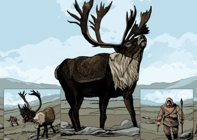Origin of the Caribou Spread 10